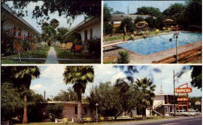 Tropical Motor Hotel - McAllen, Texas TX Postcard