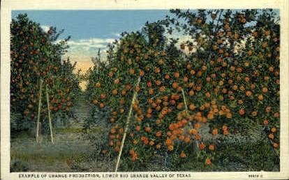 Orange Production - Misc, Texas TX Postcard