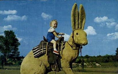 Jack Rabbit - Misc, Texas TX Postcard