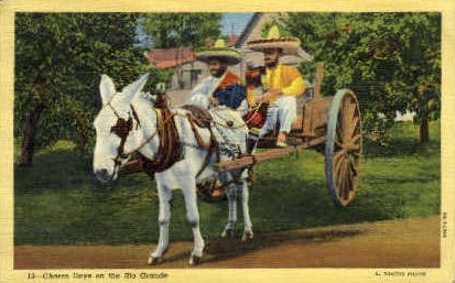 Charro Days - Misc, Texas TX Postcard