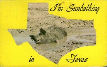 Sunbathing - Misc, Texas TX Postcard