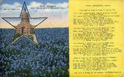 Wonderful Texas - Misc Postcard