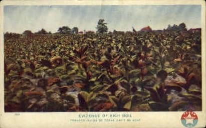 Evidence Of Rich Soil - Misc, Texas TX Postcard
