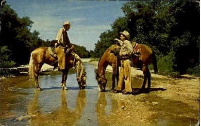 On The trail - Misc, Texas TX Postcard