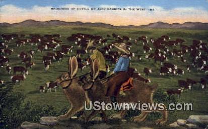 Rounding Cattle - Misc, Texas TX Postcard