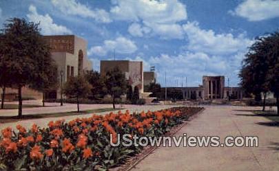 Canna Beds - Dallas, Texas TX Postcard