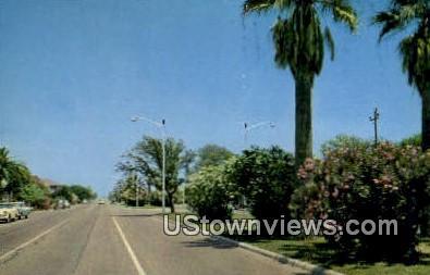 Broadway, Stately Palms - Galveston, Texas TX Postcard