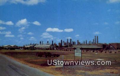 Celanese Plant - Bishop, Texas TX Postcard
