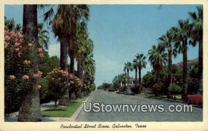 Residential Street Scene - Galveston, Texas TX Postcard