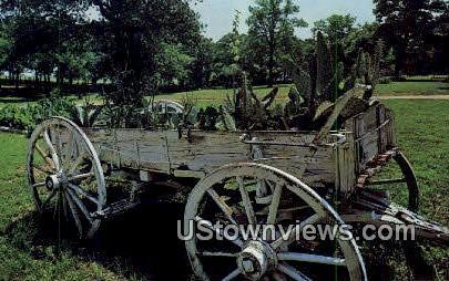 Austin Patio Dude Ranch - Grapevine, Texas TX Postcard