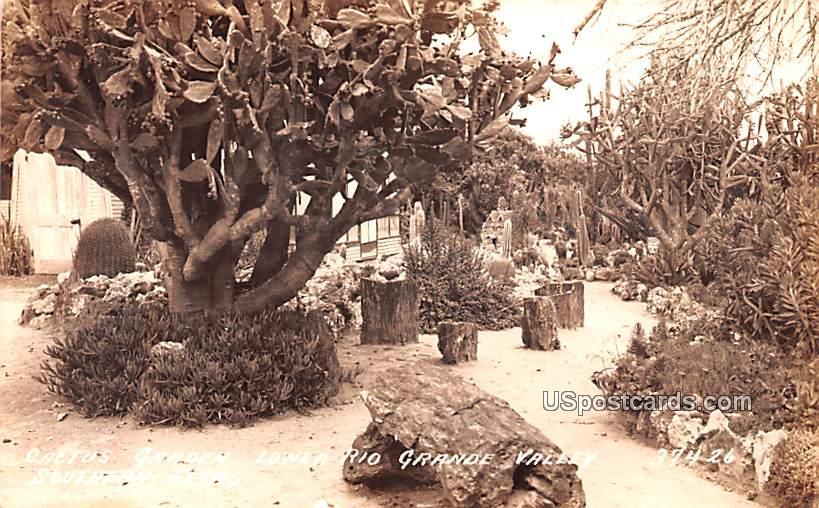 Cactus Garden - Southern Texas Postcards, Texas TX Postcard