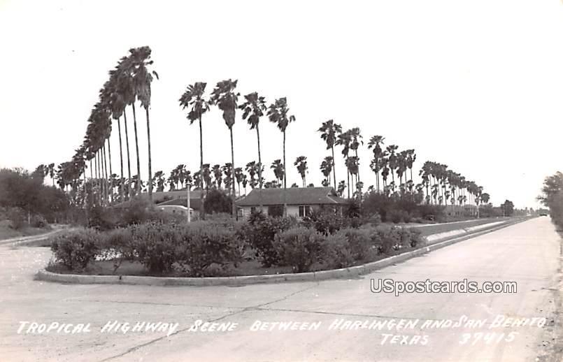 Tropical Highway Scene - San Benito, Texas TX Postcard