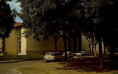 Witte Museum - San Antonio, Texas TX Postcard