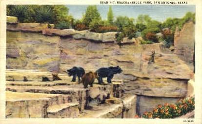 Brackenridge Park - San Antonio, Texas TX Postcard