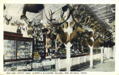Albert's Buckhorn Saloon - San Antonio, Texas TX Postcard