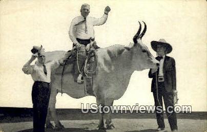 Lone Star, Miss Jeanne Maulsby - San Antonio, Texas TX Postcard