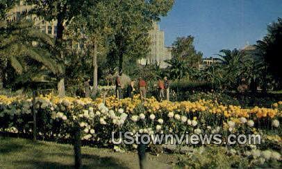 Gardens at the Alamo - San Antonio, Texas TX Postcard