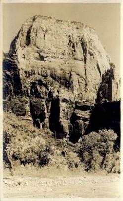 Lion Park - Provo, Utah UT Postcard
