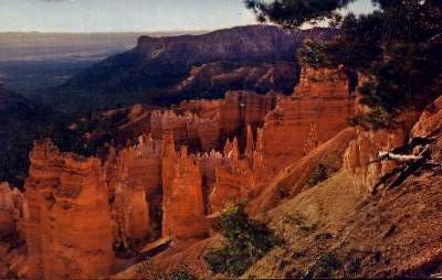 Bryce Canyon National Park - Utah UT Postcard