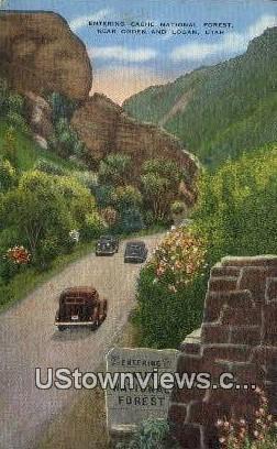 Cache National Forest - Ogden, Utah UT Postcard