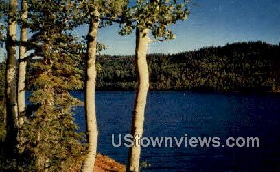 Navajo Lake - Dixie National Forest, Utah UT Postcard