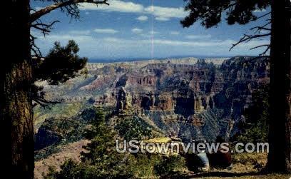 North Rim - Grand Canyon, Utah UT Postcard