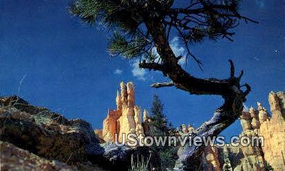 Queen's Garden - Bryce National Park, Utah UT Postcard