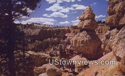 Saddle Horse Trail - Bryce Canyon National Park, Utah UT Postcard