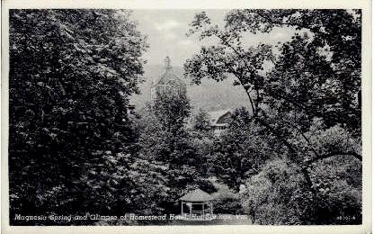 Glimpse of Homestead Hotel - Hot Springs, Virginia VA Postcard