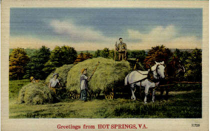 Greetings From - Hot Springs, Virginia VA Postcard