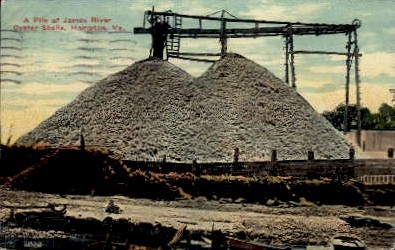 James River Oyster Shells - Hampton, Virginia VA Postcard