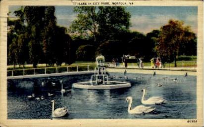 Lake In City Park - Norfolk, Virginia VA Postcard