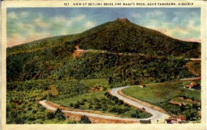 Skyline Drive and Mary's Rock - Panorama, Virginia VA Postcard