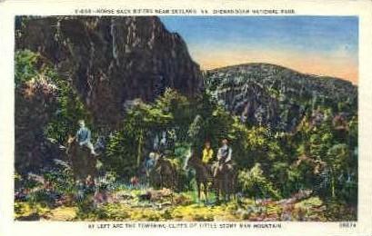 Horse Back Riders  - Skyland, Virginia VA Postcard