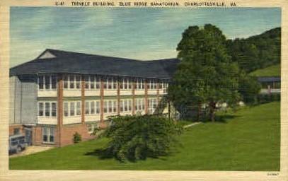 Trinkle Bldg. - Charlottesville, Virginia VA Postcard
