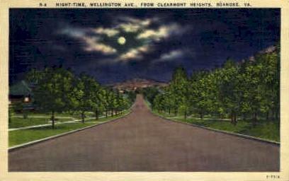 Wellington Ave.  - Roanoke, Virginia VA Postcard