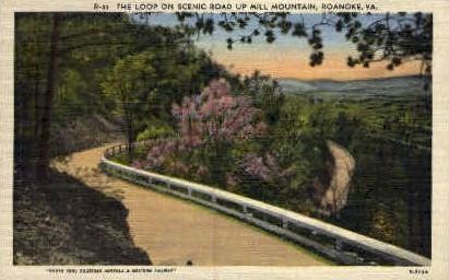 Road Up Mill Mt. - Roanoke, Virginia VA Postcard