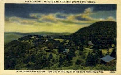 Shenandoah National Park - Misc, Virginia VA Postcard