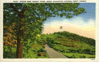 Reddish Knob Lookout Tower - Misc, Virginia VA Postcard