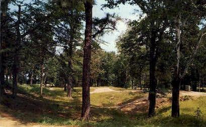 The Crater - Petersburg National Military Park, Virginia VA Postcard