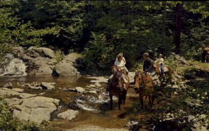 Trail Riders - Shenandoah National Park, Virginia VA Postcard