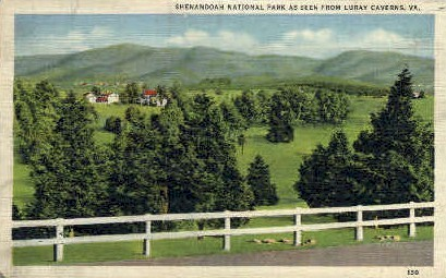 Shenandoah National Park - Luray Caverns, Virginia VA Postcard