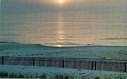 Sandbridge - Virginia Beach Postcards, Virginia VA Postcard