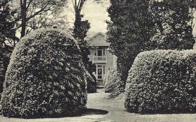 Boxwood Garden, Ash Lawn - Charlottesville, Virginia VA Postcard