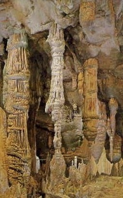 Totem Poles, Luray Caverns - Virginia VA Postcard