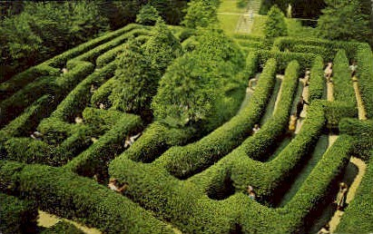 Governors Palace Maze - Williamsburg, Virginia VA Postcard