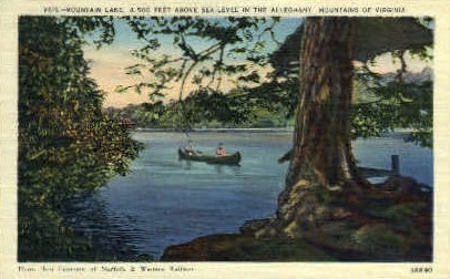 Mountain Lake - Misc, Virginia VA Postcard
