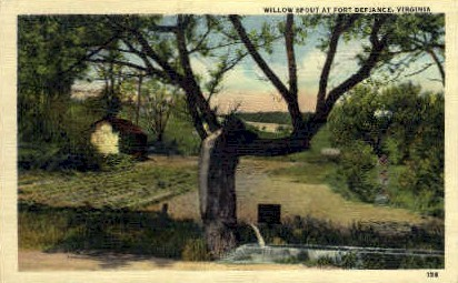 Willow Sprout  - Fort Defiance, Virginia VA Postcard