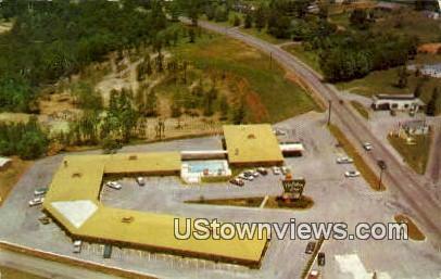 Aerial View Holiday Inn  - Lynchburg, Virginia VA Postcard