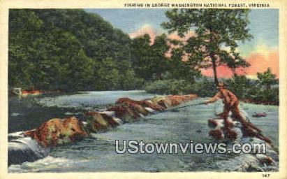 George Washington National Forest  - Virginia VA Postcard